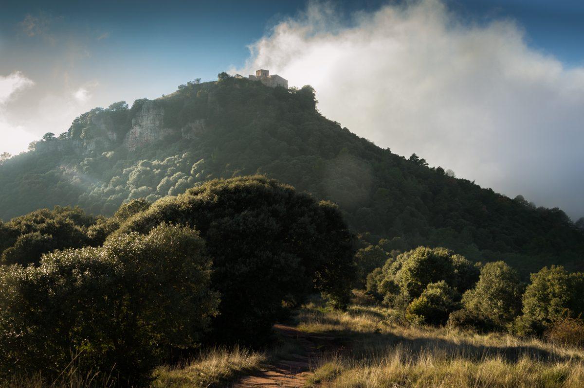 I colori della cima del Tagamanent in autunno